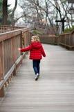 Lite går flickan i ett rött omslag ner vägen som trycker på staketet royaltyfri bild