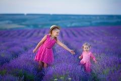 Lite går flickan mellan lavendelfälten i Provence Förbluffa plats av flickamakt och den härliga naturen royaltyfri bild