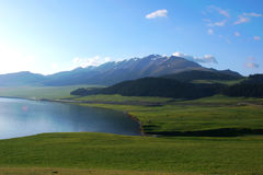 Lite grann av Sayram sjön Royaltyfria Foton