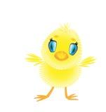 Lite gullig dunig tecknad filmfågelunge Royaltyfri Foto