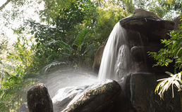 Härlig vattenfall i trädgården royaltyfria bilder