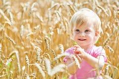 Lite le behandla som ett barn på fält av mogen råg eller korn royaltyfria bilder