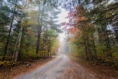 Lite parkerar den dimmiga vägen i provinsiell Algonquin, Ontario, Kanada Arkivbilder