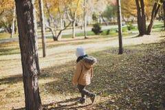 Lite pojke som spelar i höstskogen som samlar sidor Royaltyfri Bild