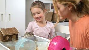 Lite spelar flickan och hennes mamma med en mycket liten hamster arkivfilmer