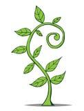 Lite växande växt. Vektorillustration Fotografering för Bildbyråer