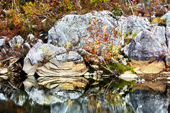 Lite varstans nedgångdag på buffelfloden Royaltyfria Foton