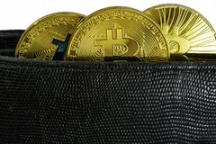 Litecoin, bitcoin and ethereum lie in black leather wallet closeup. Silver litecoin, golden bitcoin and silver ethereum  lie in black leather wallet closeup  on Stock Image