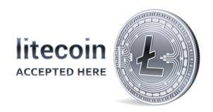 Litecoin Emblema aceitado do sinal Moeda cripto Moeda de prata com símbolo de Litecoin isolada no fundo branco 3D Physi isométric Fotos de Stock Royalty Free