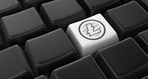 Litecoin key concept Stock Images