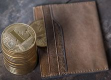 Litecoin cryptocurrency replica Royalty Free Stock Photo