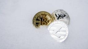 Litecoin y cryptocurrency de los bitcoins en nieve El concepto de trabajar independientemente, la bolsa de acción Bitcoin del oro Fotos de archivo