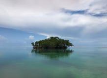 Liten ö i Key West Arkivbild
