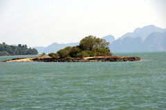 Liten ö med ett träd i havet Royaltyfri Fotografi
