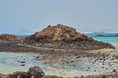 Liten ö med turkoshavet i Isla de Lobos, Fuerteventura, Spanien royaltyfria bilder