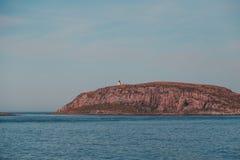 Liten ö utanför Vardo med en fyr som vägleder skepp, när den är mörk i Norge arkivfoton