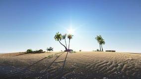 Liten öde ö med palmträdlängd i fot räknat lager videofilmer