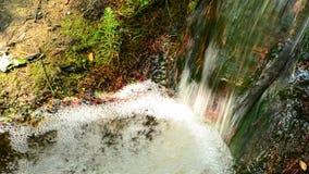 Liten bäck eller flod med den mycket lilla vattenfallet stock video