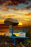 Liten bänk med våt målarfärg på solnedgången Arkivbilder