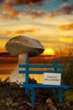 Liten bänk med våt målarfärg på solnedgången Arkivbild