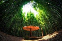 Liten bänk som göras ut ur bambu Royaltyfria Bilder