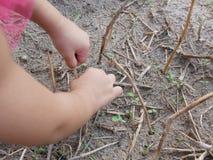 Liten babys händer som spelar och trycker på torra gräs, jord och unga spiragräs royaltyfri fotografi
