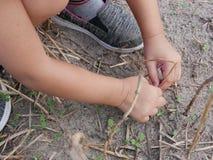 Liten babys händer som spelar och trycker på torra gräs, jord och unga spiragräs arkivfoton