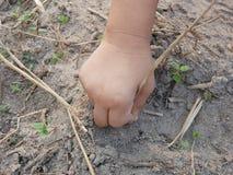 Liten babys hand som spelar och trycker på torra gräs, jord och unga spiragräs arkivbilder