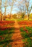 Liten bana i hösten Royaltyfri Foto