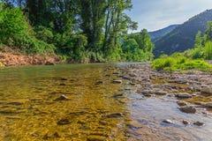 Liten bergflod Royaltyfri Fotografi