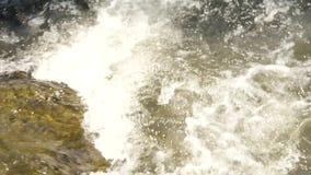 Liten bergflod Snabb vattenström som flödar bland stenar som skapar vitt bubblandeskum långsam rörelse arkivfilmer