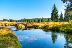 Liten bergliten vik som slingrar i mitt av ängar och solig dag för skog med blå himmel och vit, fördunklar i Jizera arkivfoto
