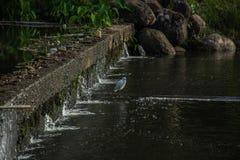 Liten bevattningfördämning med att flöda för vatten Royaltyfri Foto