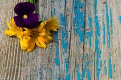 Liten blommabukett av calendulaen och violets på gammalt trämålat bräde Royaltyfria Foton