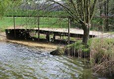 Liten bro på dammet Arkivfoto