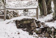 Liten bro som täckas med snö Royaltyfria Foton