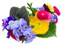 Liten bukett av violets, pansies och ranunculusen Arkivfoto