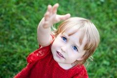 Liten caucasian flicka som begär framsidacloseupen arkivfoto