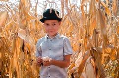 Liten caucasian pojke på havrelantgården säsong för fantasiskördmontage Lycklig Smi arkivbild