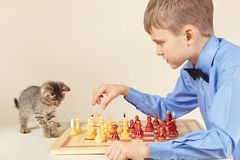 Liten chessplayer med den gulliga kattungen spelar schack Royaltyfri Bild