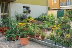 Liten dekorativ trädgård med blomkrukor Fotografering för Bildbyråer