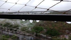 liten droppevatten Arkivfoton