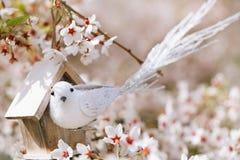 Liten fågel och voljär i vår med körsbärsröd blomma s för blomning Arkivbild