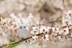 Liten fågel och voljär i vår med körsbärsröd blomma s för blomning Arkivfoto