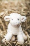 Liten fårleksak arkivbild