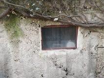 Liten fönster och vägg fotografering för bildbyråer