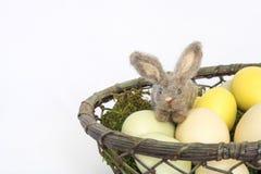 Liten Felted kanin eller kanin i korg av Pale Eggs på mossa och Royaltyfria Foton