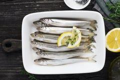 Liten fisk för nytt havskallt vatten liksom nors, sardin, ansjovisar på en enkel bakgrund med citronskivor, för royaltyfri fotografi