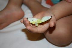 Liten fjäril i child&en x27; s-hand Royaltyfri Fotografi