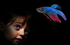 Liten flicka bak akvariet som ser på fisk Royaltyfri Bild